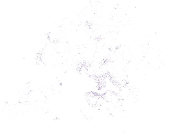 vector_10pc
